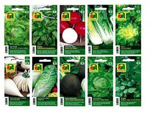 graines bio pour potager TOP 4 image 0 produit