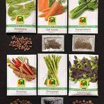 graines bio pour potager TOP 8 image 2 produit