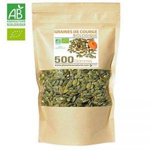 Graines de Courge Bio - 500 g (Cucurbita pepo) de la marque Planète au Naturel image 0 produit