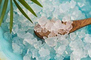 Grains de kéfir à l'eau, probiotiques, cristaux d'eau japonais, pour kombucha – 50g de la marque HoneyTree image 0 produit