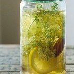 Grains de kéfir à l'eau, probiotiques, cristaux d'eau japonais, pour kombucha – 50g de la marque HoneyTree image 2 produit