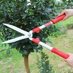 graminée pour jardinière TOP 3 image 1 produit