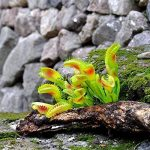 GSYLOL Artificielle Carnivore Herbe Anti Moustiques Mouches Herbe En Pot Plantes Succulentes Maison Jardin Décor de la marque GSYLOL image 1 produit