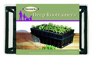 Haxnicks Tierra Garden Kit pour semis avec système pour racines profondes Rootrainers profonds 32 Cells Noir de la marque Haxnicks image 0 produit