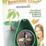 herbes aromatiques potager TOP 5 image 1 produit