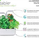 herbes aromatiques potager TOP 7 image 3 produit