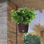 HUAESIN 4pcs plante artificielle petit arbuste branche de fausse fleur de neige feuille dentelée pour gardin maison intérieur ou extérieur de la marque HUAESIN image 3 produit