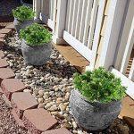 HUAESIN 4pcs plante artificielle petit arbuste branche de fausse fleur de neige feuille dentelée pour gardin maison intérieur ou extérieur de la marque HUAESIN image 4 produit