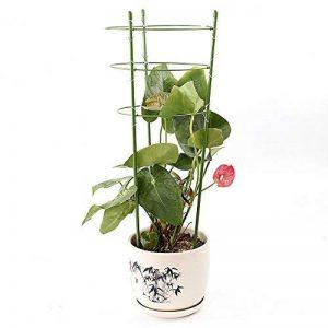 JYCRA plantes grimpantes support, support pour plantes 2pcs Bagues Mini cages de treillage support pour plantes de jardin pour plantes grimpantes et vigne, Green, 60cm/24inch de la marque JYCRA image 0 produit