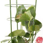 JYCRA plantes grimpantes support, support pour plantes 2pcs Bagues Mini cages de treillage support pour plantes de jardin pour plantes grimpantes et vigne, Green, 60cm/24inch de la marque JYCRA image 3 produit