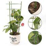 JYCRA support de plantes grimpantes, 3pièces Bagues de support de plante Mini cages de treillage support pour plantes de jardin pour plantes grimpantes et vigne, Green, 60cm/24inch de la marque JYCRA image 2 produit