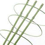 JYCRA support de plantes grimpantes, 3pièces Bagues de support de plante Mini cages de treillage support pour plantes de jardin pour plantes grimpantes et vigne, Green, 60cm/24inch de la marque JYCRA image 4 produit