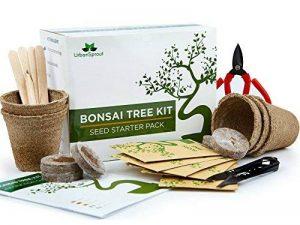 Kit Arbre de Bonsaï Faites grandir votre propre arbre Bonsaï à partir de graines - Cet ensemble cadeau comprend 5 variétés d'arbres à planter - Croissance en intérieur en suivant les instructions étape par étape incluses de la marque Urban Sprout image 0 produit