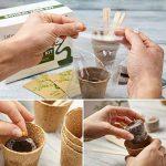 Kit Arbre de Bonsaï Faites grandir votre propre arbre Bonsaï à partir de graines - Cet ensemble cadeau comprend 5 variétés d'arbres à planter - Croissance en intérieur en suivant les instructions étape par étape incluses de la marque Urban Sprout image 3 produit