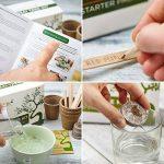 Kit Arbre de Bonsaï Faites grandir votre propre arbre Bonsaï à partir de graines - Cet ensemble cadeau comprend 5 variétés d'arbres à planter - Croissance en intérieur en suivant les instructions étape par étape incluses de la marque Urban Sprout image 2 produit