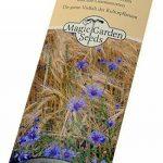 Kit de graines: 'Plantes médicinales', 5 herbes médicinales traditionnelles présentées dans une belle boîte-cadeau de la marque Magic Garden Seeds image 2 produit