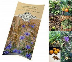 Kit de graines: 'Semences de mandragore', 2 variétés, 10 graines de Mandragora officinarum & 7 graines Mandragora autumnalis de la marque Magic Garden Seeds image 0 produit