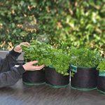 kit herbes aromatiques TOP 11 image 2 produit