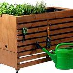 kit plantation herbes aromatiques TOP 2 image 2 produit