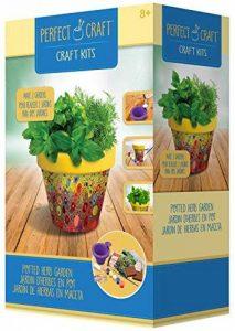 kit plantation herbes aromatiques TOP 6 image 0 produit