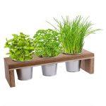 kit plantation herbes aromatiques TOP 8 image 1 produit