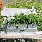 kit plantation herbes aromatiques TOP 9 image 1 produit