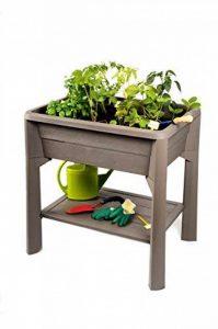 Koll Living Potager Veg & Table–pour Herbes aromatiques–& Imitation sur Le Balcon ou la Terrasse de la marque Koll Living image 0 produit