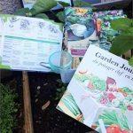 La semence BIO Coffret Mon jardin potager cléf en main BIO de la marque La semence BIO image 3 produit