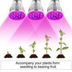 LED élèvent la lumière 15W Full Spectrum double plante tête lampe cou 360 ° flexible double commutateur pour plante hydroponique à effet de serre de la marque Lumière de la plante image 2 produit
