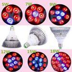 LED Plante succulente Growing Lampe Luminaire Set Pépinière Lampe Rouge Ampoule Coopérative Lumière (puissance : 15W) de la marque Lumière de la plante image 3 produit