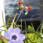 Lot de 2 papillons, à planter, décoration de plante, fête des mères, cadeau original unique, anniversaire, femme, couleur, plante, été jardinière de la marque image 3 produit