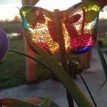 Lot de 2 papillons, à planter, décoration de plante, fête des mères, cadeau original unique, anniversaire, femme, couleur, plante, été jardinière de la marque image 4 produit