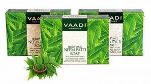 Lot de 3Bio Neem Patti Sels Contient Pure Neem Feuilles (3x 75g/m²) de la marque VAADI Herbals image 0 produit