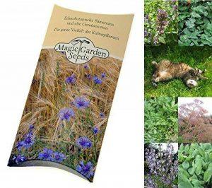 Magic Garden Seeds Kit de graines: 'Herbes-aux-chat', semences pour 3 variétés de plantes adorées par les chats dans un beau cadeau emballage de la marque Magic Garden Seeds image 0 produit