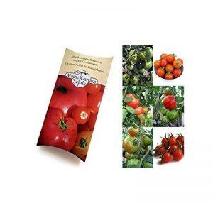 Magic Garden Seeds Kit de semences: 'Plantes de tomate anciens', graines de 3 variétés de tomates du patrimoine savoureuses, présentées dans une belle boîte-cadeau de la marque Magic Garden Seeds image 0 produit