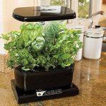Miracle-Gro AeroGarden Harvest avec kit de capsules de graines d'herbes gourmets (noir) de la marque AeroGarden image 1 produit