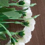 Mzming Lot de 4Meilleur Cadeau pour la fête 10Tête artificielle Carnation Fleur Faux Fleurs Artificielles en soie Bush pour la fête cadeau Bouquet de fleurs artificielles pour maison/mariage/tombe/Vase Décoration–Rose, Blanc de la marque MZMing image 3 produit