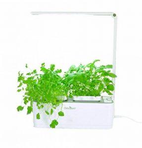 Odyseed - Potager d'Intérieur 100% Bio - Cultivez vos herbes aromatiques - Basilic Cannelle et Citron Inclus de la marque odyseed image 0 produit