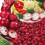 oignons à planter au printemps TOP 2 image 2 produit