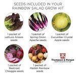 oignons à planter au printemps TOP 5 image 3 produit