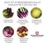 oignons à planter au printemps TOP 5 image 4 produit