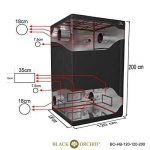 orchidée noir TOP 4 image 2 produit