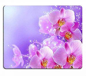 orchidée bleue naturelle TOP 5 image 0 produit