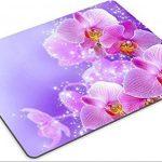 orchidée bleue naturelle TOP 5 image 1 produit