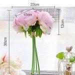 orchidée bleue naturelle TOP 6 image 4 produit