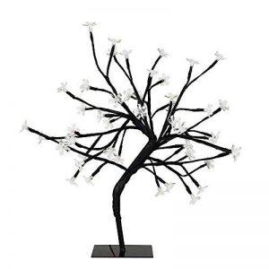 petit arbre japonais bonsaï TOP 2 image 0 produit