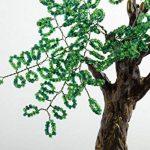 petit arbre japonais bonsaï TOP 5 image 3 produit