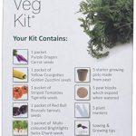 Plant theatre funky veg kit kit de 5 légumes extraordinaires à faire pousser de la marque Plant Theatre image 1 produit