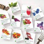 Plant theatre funky veg kit kit de 5 légumes extraordinaires à faire pousser de la marque Plant Theatre image 2 produit