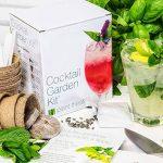 Plant Theatre kit de culture de 6 variétés de plantes pour cocktails de la marque Plant Theatre image 1 produit